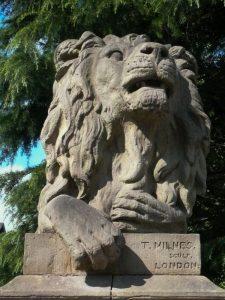 Saltaire Lion - Determination