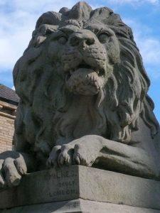 Saltaire Lion - War